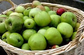 avoided foods in a soft diet get fit jillian michaels
