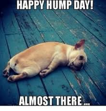 Hump Day Meme - happy hump day almost there hump day meme on me me