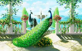peacocks painting beautiful wallpaper hd for desktop high quality
