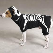 Target Dog Halloween Costume Dog Skeleton Costume Pinx Pets