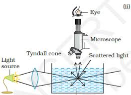 the scattering of light by colloids is called explain the following terms i electrophoresis ii coagulation