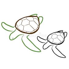 sea turtle stock vector image 40821516