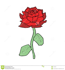 drawn red rose cartoon pencil and in color drawn red rose cartoon