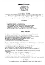 Resume Samples For Experienced It Professionals by How To Make A Resume 101 Examples Included