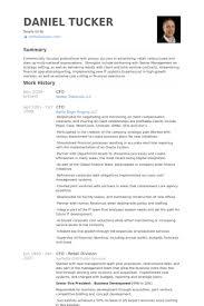 cfo resume exles cfo resume sles visualcv resume sles database