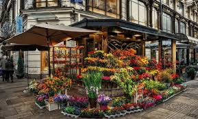 flower store beautiful flower shop by pingallery on deviantart