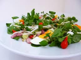 comment cuisiner les poivrons rouges salade thaï aux gouttes de poivrons rouges la recette facile par