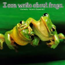 frog writing mrs russell u0027s room