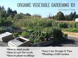 amazing of vegetable garden layout designs free vegetable garden