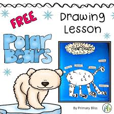 polar bear drawing lesson with polar bear facts included