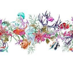 yosun denizyıldızı coral alg denizanası ve balık sualtı suluboya
