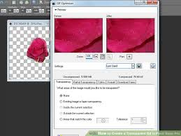 how to create a transparent gif in paint shop pro 7 steps