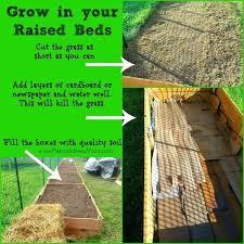 How To Build A Raised Garden Bed Cheap Make A Garden Bed U2013 Exhort Me