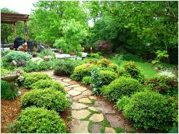 backyards cozy affordable images about landscaping ideas moms