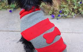 thanksgiving dog sweater the best pet travel accessories travel leisure