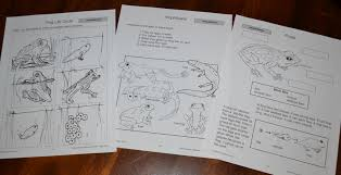 zaner bloser writing paper printable planning our five in a row units small hands inspired we use all about reading zaner bloser handwriting and singapore math all of which require no planning from me