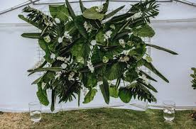 wedding backdrop greenery diy greenery wedding backdrop with tropical foliage nouba au