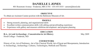 profile examples for resume the best resume template word plus