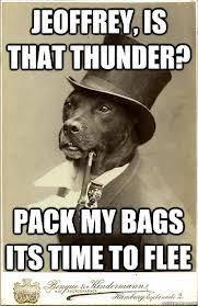 Benson Dog Meme - 41 best old money dog images on pinterest ha ha funny stuff and