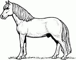 the most brilliant horse color pages to inspire in coloring images