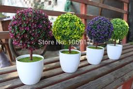 bonsai soil picture more detailed picture about garden and home
