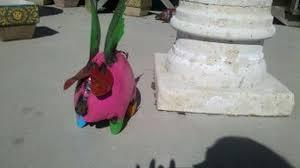 flying pig md pink westwood pavillion