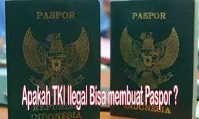membuat paspor pelaut apakah tki ilegal di arab saudi bisa membuat paspor baru liputanbmi