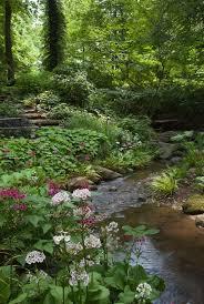 145 best garden delights woodland garden images on pinterest