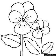 zinnias flower coloring zinnias coloring printables