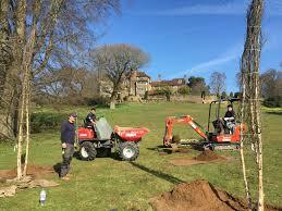 Define Tree Services Reeves Arboricultural Services