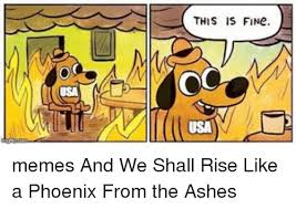 Usa Memes - this is fine usa memes and we shall rise like a phoenix from the
