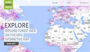 Interactive Map Global Forest Watch by Paula Caballero Caballerowb Twitter