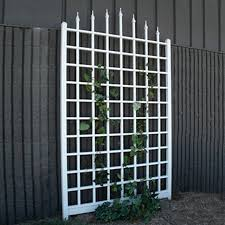 shop dura trel 57 in w x 96 in h white transitional garden trellis