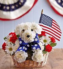Dog Flower Arrangement Veterans Day Flowers For Patriotic Dog Lovers Woof Woof Mama