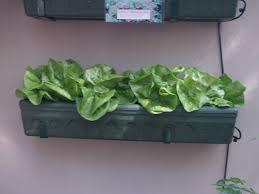 herb planters planter designs ideas
