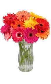 Daisy Centerpiece Ideas by Daisy Flower Arrangement Centerpieces Gerbera Daisy Centerpieces