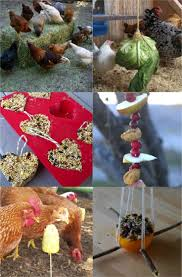 Backyard Chickens Magazine by Easy Backyard Chicken Coop Plans Coops Winter And Farming