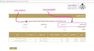 check family visit visa application status in saudi arabia saudi