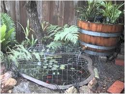 Simple Backyard Ideas Backyards Impressive Backyard Koi Pond Ideas Simple Backyard