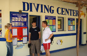 dive centre sportif travel windsurfing holidays kitesurfing holidays atol tour