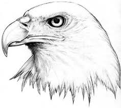 eagle tattoos designs pictures page 27
