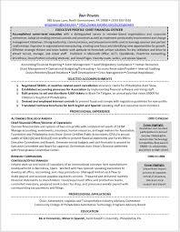 Crisis Management Resume Work Samples Ventureready Llc