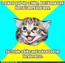 Memes About God - happy kitten meme sharenator