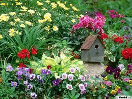 imagenes de jardines pequeños con flores flores para jardines pequeños