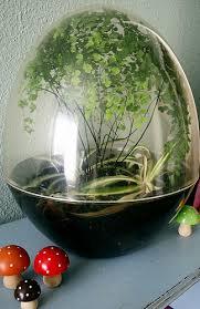 thrifty crafting terrarium inspiration