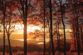 john burk england fall foliage 2012 recap