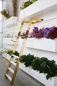 home design stores auckland 530 best deco shop images on pinterest shops pharmacy and