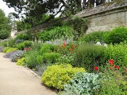 bulb garden layout top 10 hardworking plants for herbaceous borders jardin