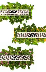 48 best click u0026 grow images on pinterest herb garden all