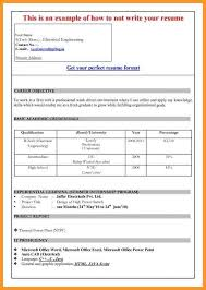 11 resume template ms word 2007 bird drawing easy